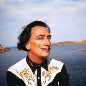 Dalí by Jan Adam Stevens