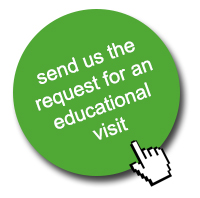 Send us the request for an educational visit